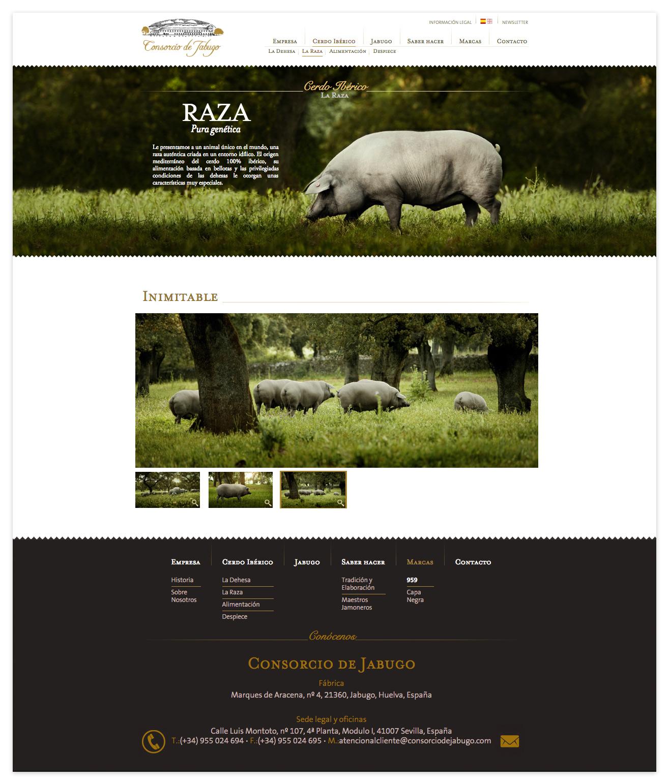 Consorcio de Jabugo Raza