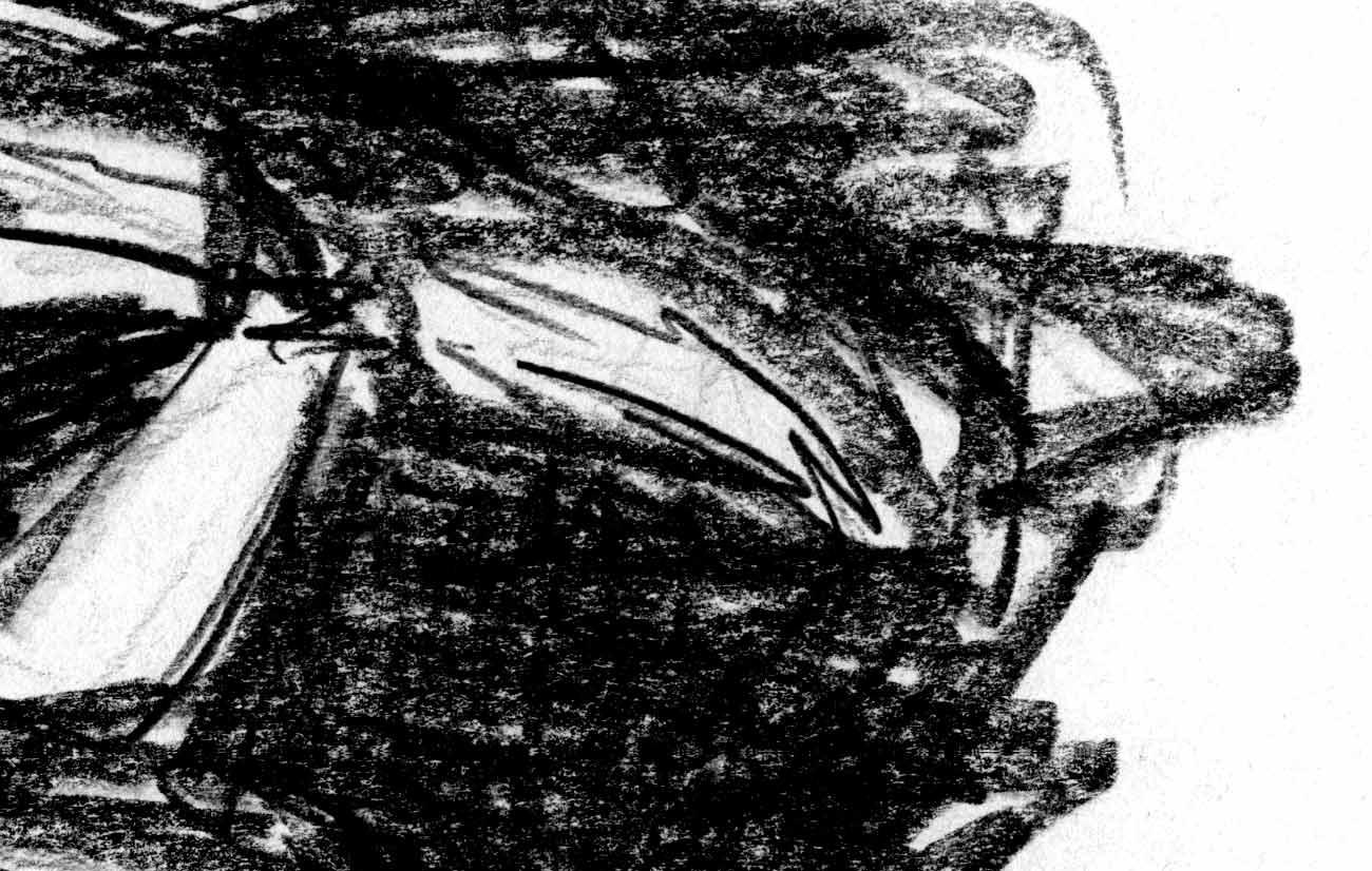 Artillero detalle ilustracion 2 - mediana1